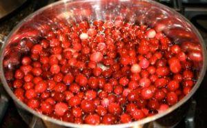 Cranberry Sauce1