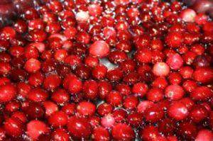 Cranberry Sauce2